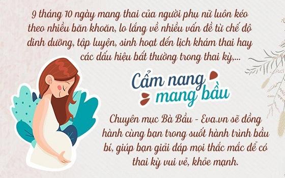 Review Sách Cẩm Nang Mang Thai Và Sinh Con