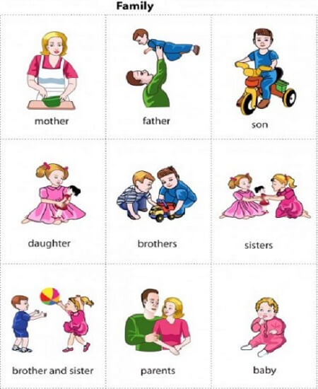 Chủ đề từ vựng tiếng Anh lớp 1 về gia đình